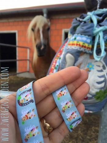 ♥MON CHÈRI♥ Webband HOTTESCHÖN Pferde PONY himmelBLAU