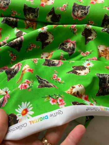 ♥KITTY on GREEN♥ 0.5m JERSEY Katzen CATS&FLOWERS