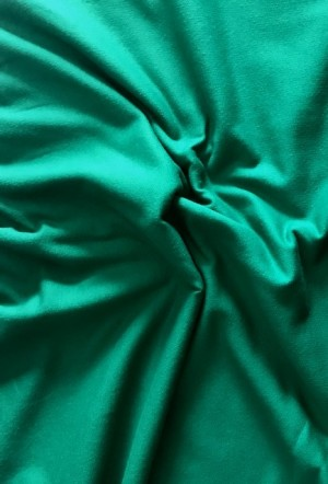 ♥FRENCH TERRY brushed♥ 0.5m COLLEGE Sweater GREEN