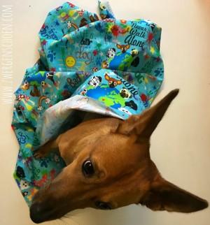 ♥WUFFz on GRAFFITISCHÖN♥ 0.59m WEBWARE Hunde BLAU