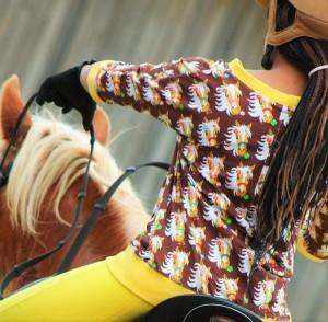 ♥MON CHERI♥ 0.5m JERSEY Haflinger PFERDE Pony SCHOKOLADE