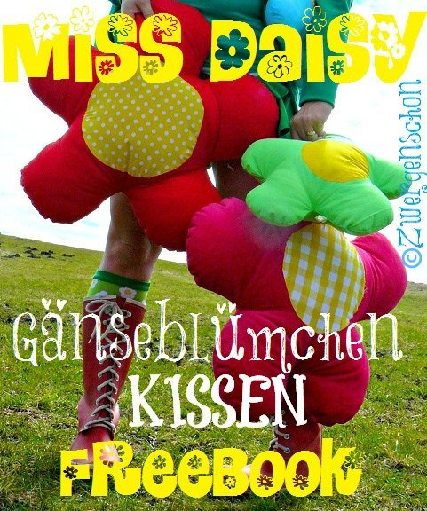 ♥MISS DAISY♥ Nähanleitung XXL Kissen APPLIKATION eBOOK 1€-SPARbie